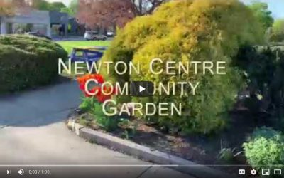 Newton Centre Community Garden!