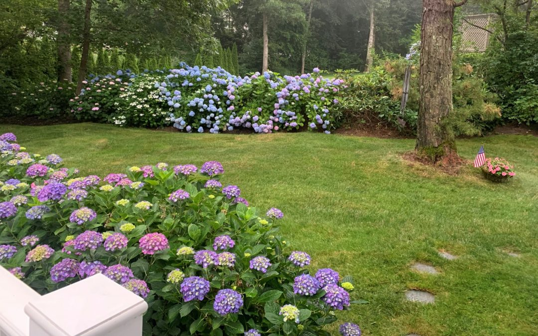 Welcome to 29 Monomoy Road in Harwich Port